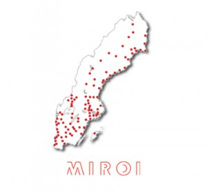 Minfulness course at Miroi